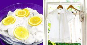 nhuộm quần áo bằng quả chanh tươi